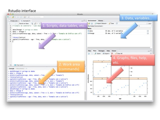 Fig. 1. RStudio interface