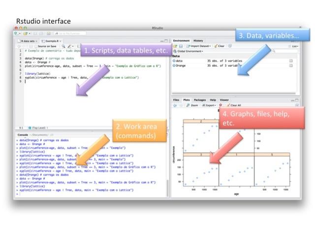 Fig. 1. RStudio interface